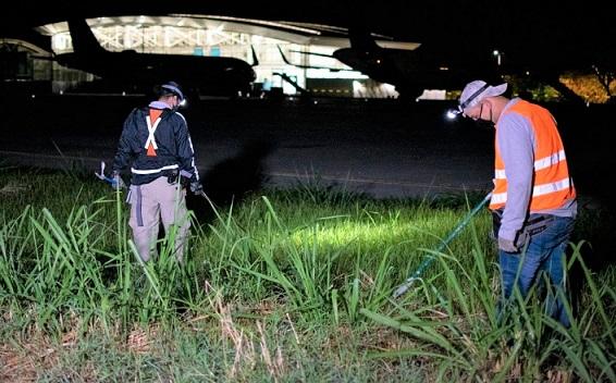 CRQ realiza controles por presencia de serpientes en el Aeropuerto El Edén de Armenia,Quindío