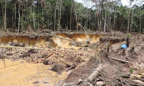 Congreso de la República aprobó proyecto que endurece penas contra delitos ambientales