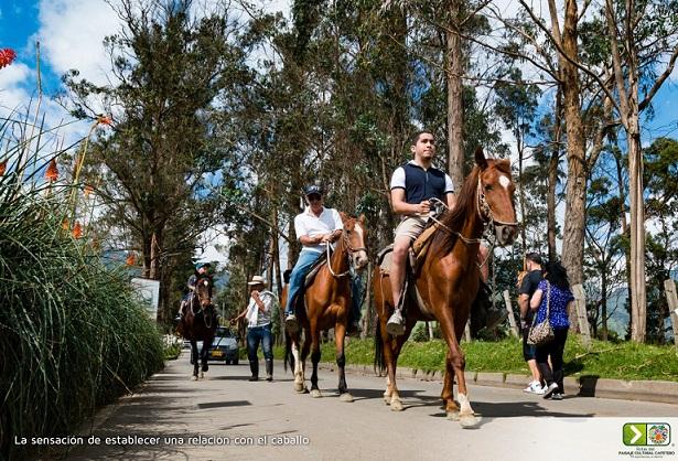 Observatorio de turismo: los quindianos prefirieron su propio destino
