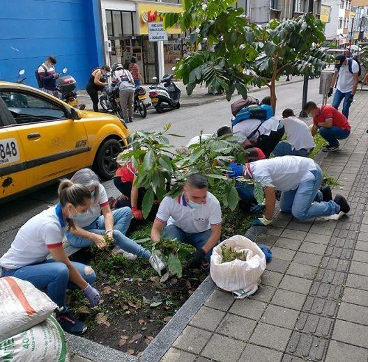 Cámara del Comercio en Armenia realiza jornada de recuperación y embellecimiento del espacio público
