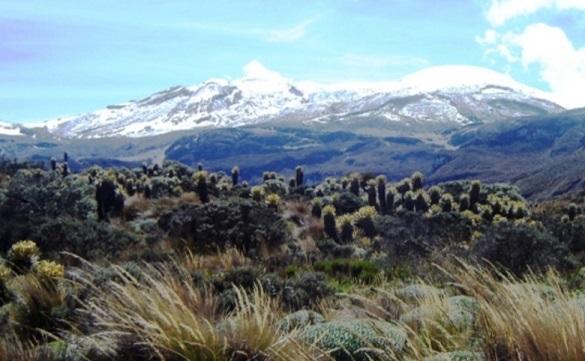 Gobernación del Quindío alerta sobre persona desaparecida en el Parque Nacional Natural los Nevados